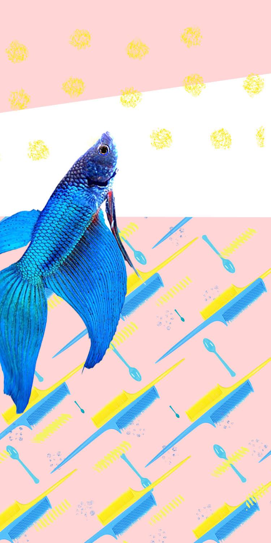 fish copy